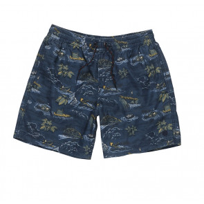 ELEMENT SHORTS UOMO ARROWROCK WK RIVER RATS BLUE