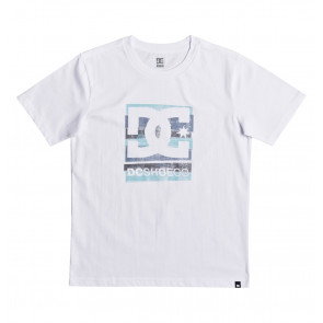 DC T-SHIRT BAMBINO RUSTED PANEL SS BOY WBB0 WHITE