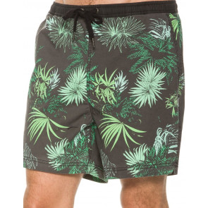 INSIGHT BOARDSHORT UOMO JUNGLE BEACH RETURN
